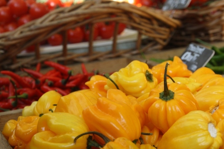 Obst&Gemüse_Nov09 (21)