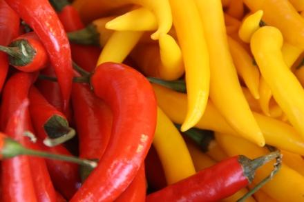 Obst&Gemüse_Nov09 (90)